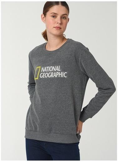 National Geographic Sweatshirt Gri